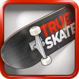 True Skate (Настоящий скейт)